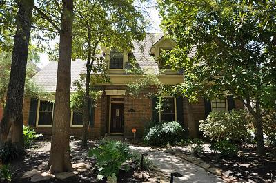 The Woodlands Single Family Home For Sale: 19 Amber Sky Place