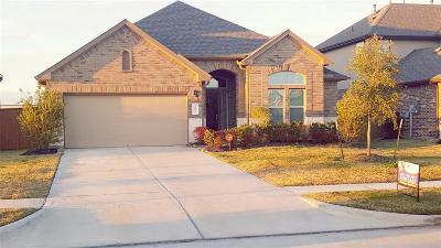League City Single Family Home For Sale: 2613 Yaletzi Lane