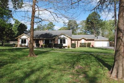Friendswood Single Family Home For Sale: 606 N Clear Creek Drive