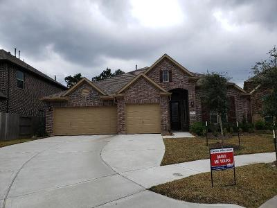 Houston Single Family Home For Sale: 14927 Samuel Springs Lane