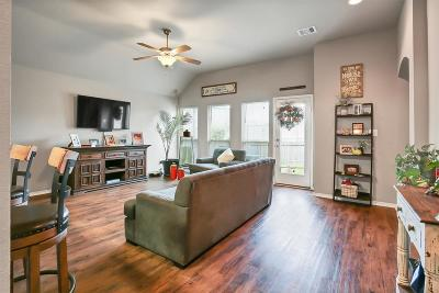 Montgomery County Single Family Home For Sale: 947 Oak Falls Drive