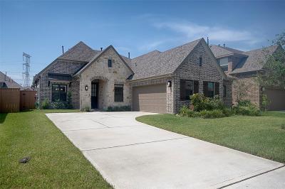League City Single Family Home For Sale: 2610 Yaletzi Lane