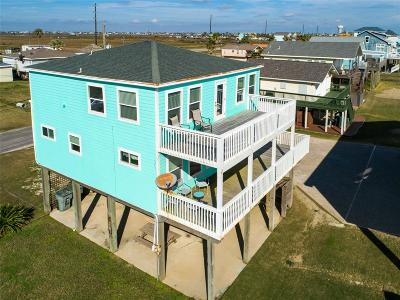 Galveston Single Family Home For Sale: 17527 Bristow