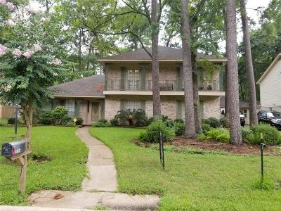 Houston Single Family Home For Sale: 1114 Terranova Lane