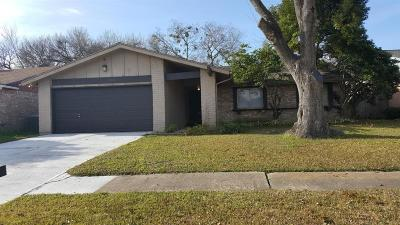 Sugar Land Single Family Home For Sale: 10210 Towneview Drive
