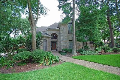 Houston Single Family Home For Sale: 3115 Blackcastle Drive