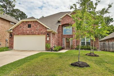 Porter Single Family Home For Sale: 24499 Madison Cove Drive