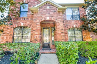 Sugar Land Single Family Home For Sale: 2226 Black Oak Drive