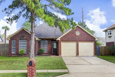 Katy Single Family Home For Sale: 21310 Wildcroft Drive