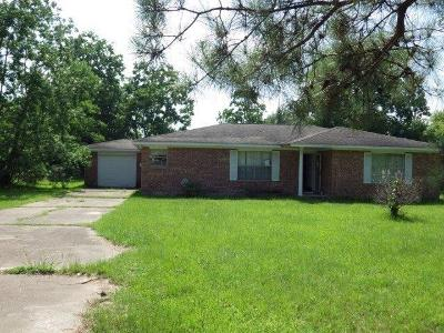 Tomball Single Family Home For Sale: 30711 Martens Road