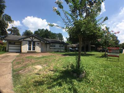 Houston Single Family Home For Sale: 9310 Vanwood Street