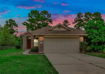 Magnolia Single Family Home For Sale: 27065 Canyon Ranch Circle