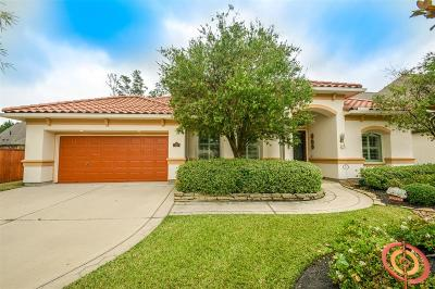 Spring Single Family Home For Sale: 30 Spring Basket Trail