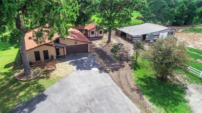Magnolia Single Family Home For Sale: 31903 Nichols Sawmill Road