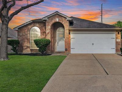 Houston Single Family Home For Sale: 6926 Catarina Circle