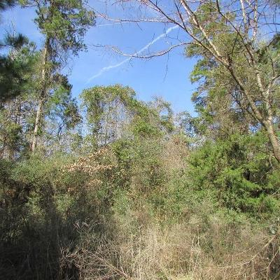 Willis Residential Lots & Land For Sale: Waco