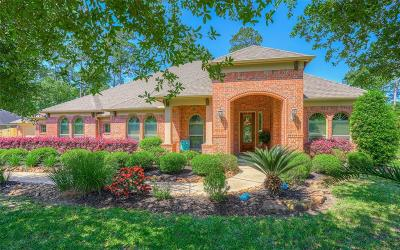 Conroe Single Family Home For Sale: 13232 Misty Sage Drive