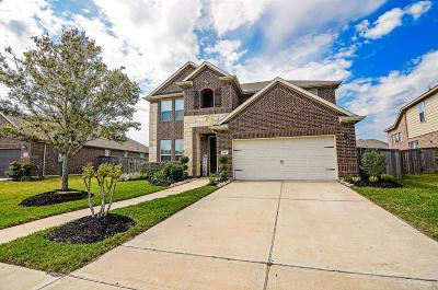 Pearland Single Family Home For Sale: 1916 Winter Creek Lane