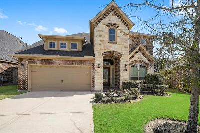 Montgomery Single Family Home For Sale: 243 Soaring Pines Place