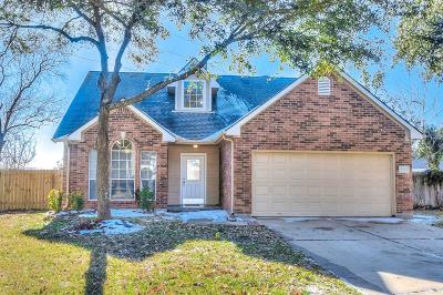 Katy Single Family Home For Sale: 3261 Berzin Court
