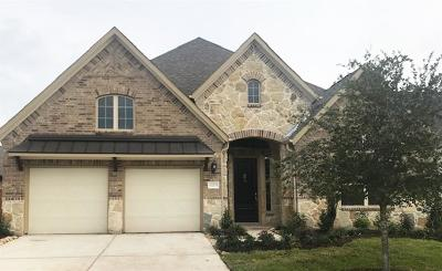 Pearland Single Family Home For Sale: 11705 Gates Ridge Ct