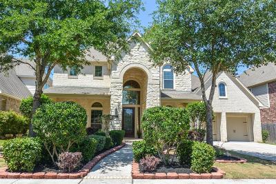Sugar Land Single Family Home For Sale: 1722 Harmony Avenue
