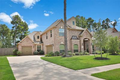 Harris County Single Family Home For Sale: 18810 Winding Atwood Lane