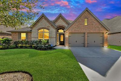 Pearland Single Family Home For Sale: 3441 Golden Cypress Lane
