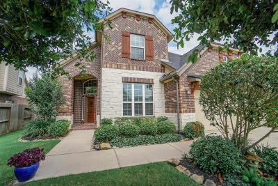 Fulshear Single Family Home For Sale: 6523 Tamarind Sky Lane