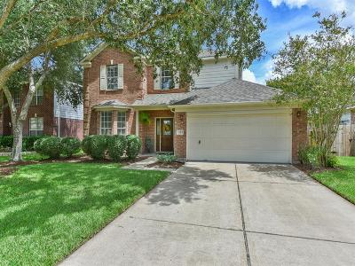 Katy Single Family Home For Sale: 1207 Hollow Ash Lane