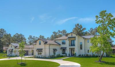 Tomball Single Family Home For Sale: 16 Indigo Illusion Circle