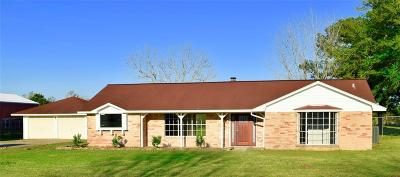 Dayton Single Family Home For Sale: 74 County Road 4866 N