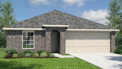 Houston Single Family Home For Sale: 15407 Rancho Joya Way