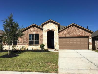 Single Family Home For Sale: 23530 Padova Gardens Drive