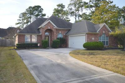 Tomball Single Family Home For Sale: 18719 Aberdeen Hollow Lane