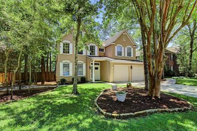 The Woodlands Single Family Home For Sale: 190 Purple Slate Place