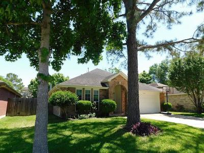 Sugar Land Single Family Home For Sale: 17007 W Dusty Mill Drive