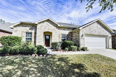 Pearland Single Family Home For Sale: 13205 Barons Cove Lane