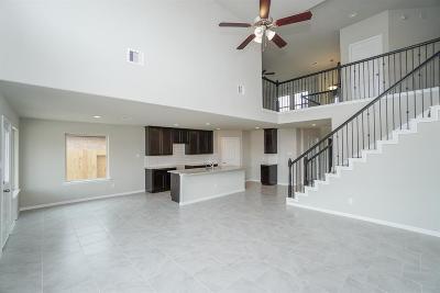 Galveston County, Harris County Single Family Home For Sale: 1413 Lake City Lane