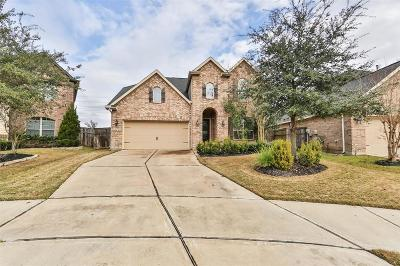 Fulshear Single Family Home For Sale: 27338 Aspen Falls Lane