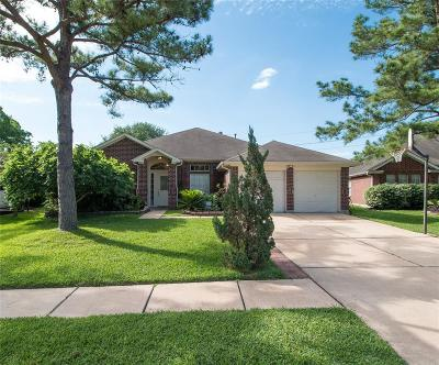 Katy Single Family Home For Sale: 2667 Anthony Hay Lane