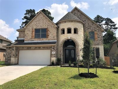 Tomball Single Family Home For Sale: 20910 Camelot Legend Drive