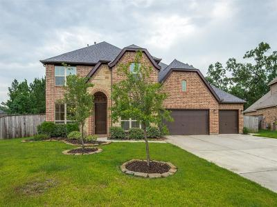 Montgomery Single Family Home For Sale: 180 Wade Pointe Drive