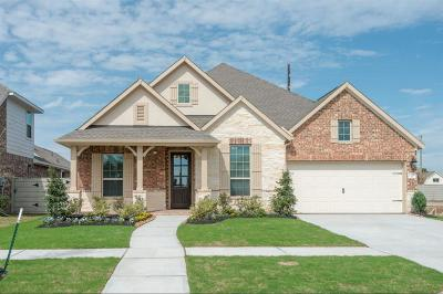 Manvel Single Family Home For Sale: 2515 Deerwood Heights