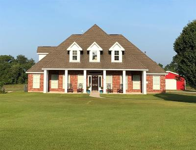 Angleton Single Family Home For Sale: 22918 Pittman Drive
