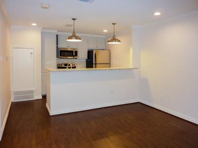 Houston Condo/Townhouse For Sale: 835 Wax Myrtle Lane #A