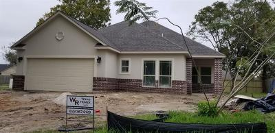 Missouri City Single Family Home For Sale: 1226 New Tree Corner
