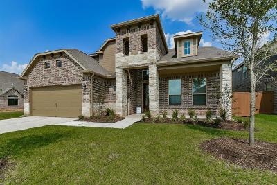 Fulshear Single Family Home For Sale: 5319 Lauren Manor Drive