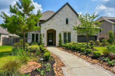 Montgomery Single Family Home For Sale: 121 Hunter Hollow Place
