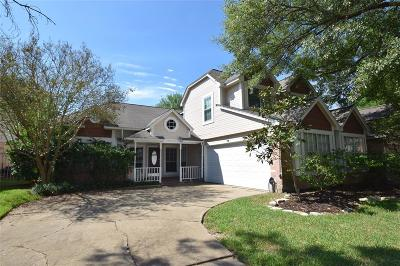 Houston Single Family Home For Sale: 13039 Skymeadow Drive